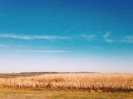 The view of the family farm off Highway 81.